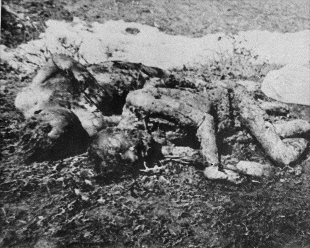 jasenovac zavrazdeny vazni